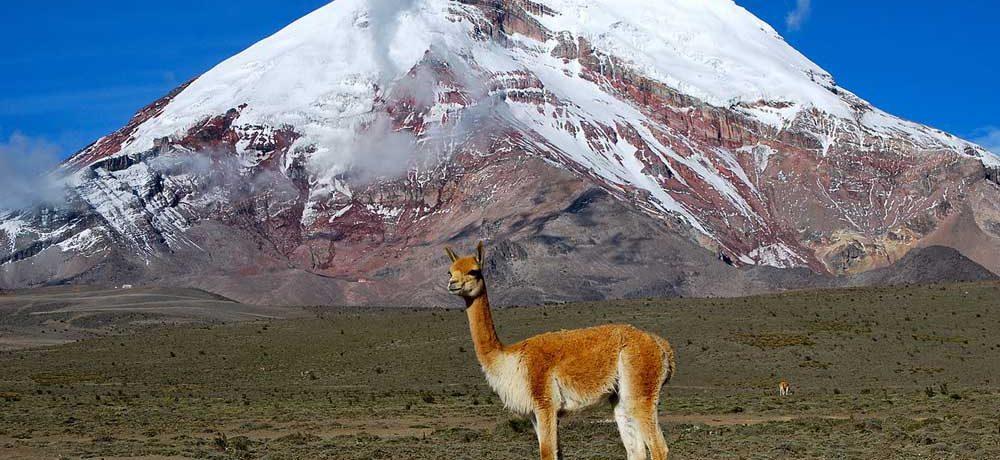 ★ El Chimborazo - La Foto que dio la Vuelta al Mundo